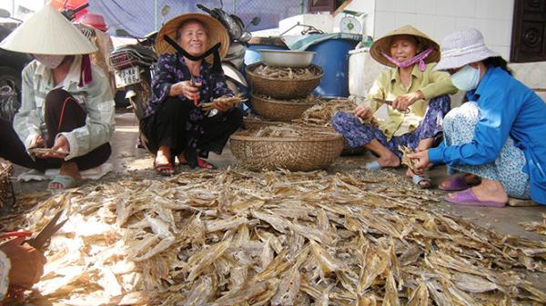 Về làng biển Quảng Phúc