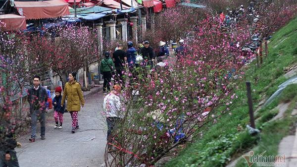 Thời tiết Tết Nguyên đán: Miền Bắc bừng nắng ấm trước khi chuyển rét đậm đúng ngày mùng 1