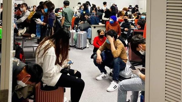 Du học sinh Quảng Bình tại Hàn: Ởlại sợ dịch, về sợ nợ nần