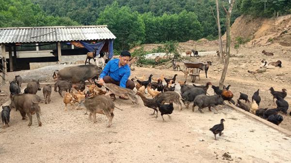 Quảng Bình: Khi thanh niên xuất ngũ khởi nghiệ
