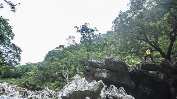 Cho phép tiếp tục khai thác thử nghiệm sản phẩm du lịch khám phá hang Vòm - Giếng Voọc