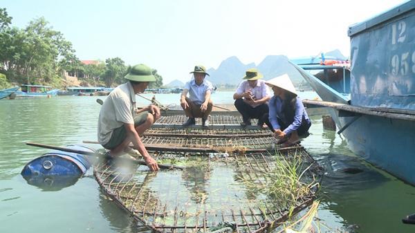 Cá trắm sông Son Quảng Bình ngon thế nào mà khách ai cũng khen