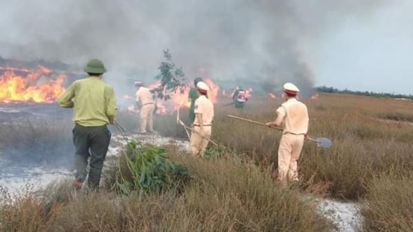 Cháy 4ha rừng tràm và rười tại xã Ngư Thủy Bắc