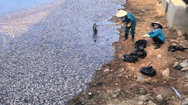 Quảng Bình: Cá hồ Trạm ch.ết hàng loạt, người dân k.êu c.ứu