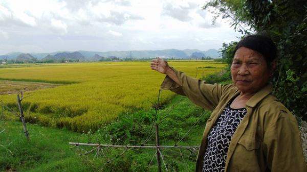 """Quảng Bình: Cần làm rõ việc côn đồ lộng hành tại các miền quê, """"bảo kê"""" cánh đồng?"""