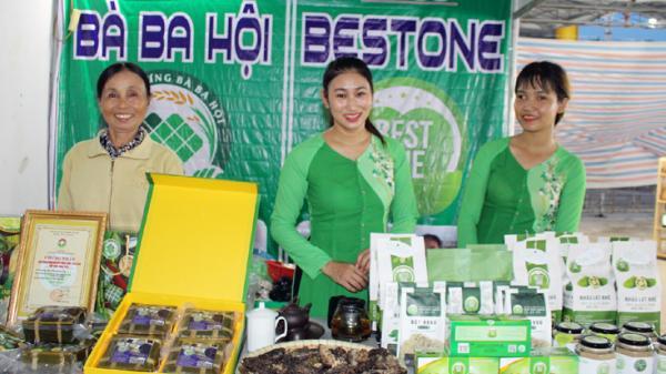 Khai mạc hội chợ triển lãm hàng công nghiệp nông thôn tiêu biểu khu vực miền Trung-Tây Nguyên năm 2020