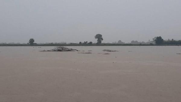 Lũ trên các sông từ Quảng Bình đến Quảng Nam đang lên nhanh