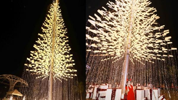 Giới trẻ Đà Nẵng kéo nhau check - in ngắm cây thông Noel cao 30m rực rỡ
