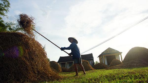 """Đất và người xứ Quảng: Nguồn gốc của câu nói """"Quảng Nam hay cãi, Quảng Ngãi hay lo"""""""