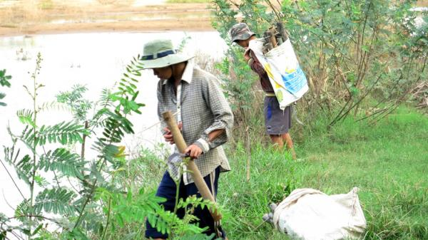 Hương vị quê nhà: Nhớ món lươn đồng xứ Quảng