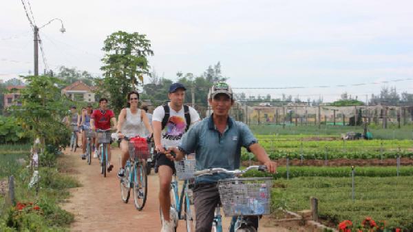 Nghỉ hè đưa con trải nghiệm nghề nông ở làng rau Trà Quế