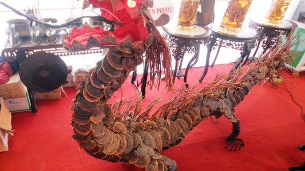 Rồng dài 4 m làm từ 40 kg nấm lim xanh