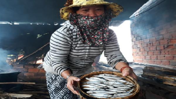 Nghề hấp cá ở Bình Minh (Thăng Bình)