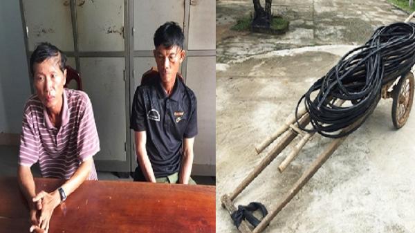 Quảng Nam: Mang cả xe bò để đi cắt trộm cáp viễn thông