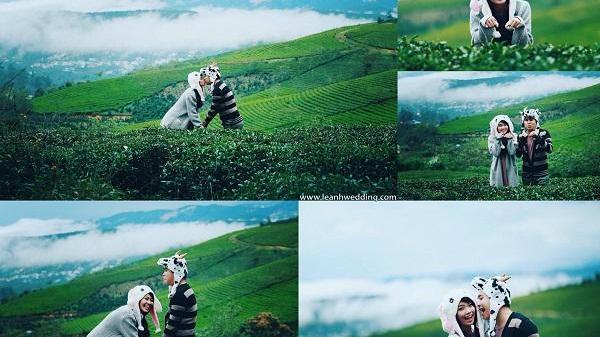 """Selfie ngay những tấm hình """"tình yêu xanh ngát xanh"""" nơi đồi chè Đông Giang"""