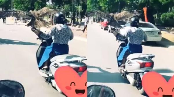 """Video cảnh báo: Nữ """"Ninja Lead"""" vừa lái xe chạy băng băng vừa để chim đậu trên tay"""