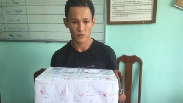 Quảng Nam: Vạch trần kẻ buôn cần sa giấu sau lớp vỏ thuốc nam