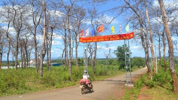Loạt cán bộ, công chức 1 huyện ở Gia Lai sẽ bị xử lý