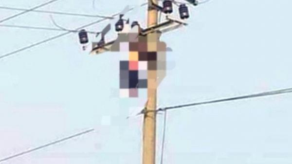 Sau tiếng nổ lớn, tá hỏa thấy người đàn ông t.ử v.o.n.g lủng lẳng trên đường điện 35 KV
