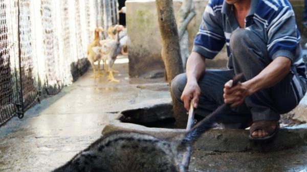 Quảng Ngãi: Toàn tỉnh có 56 trại nuôi động vật hoang dã