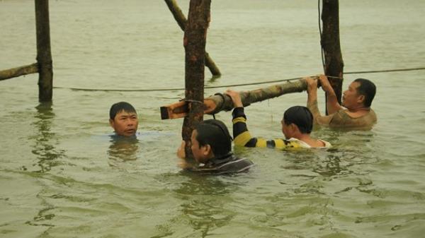 Người dân Bình Sơn (Quảng Ngãi) dầm mình dưới nước để bắc cầu gỗ đón Tết