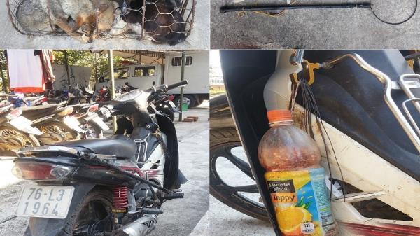 Đức Phổ (Quảng Ngãi): Truy bắt 02 đối tượng trộm chó bỏ lại xe máy tẩu thoát