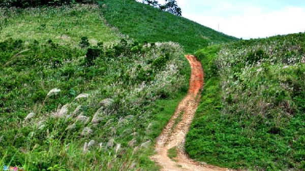 Vẻ đẹp hoang sơ ở dãy núi cao nhất Quảng Ngãi