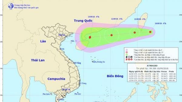 Quảng Ngãi và một số tỉnh nhận công văn yêu cầu khẩn trương ứng phó với áp thấp nhiệt đới gần biển Đông