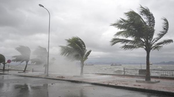 Hình thành cơn bão số 5 trên biển, 3 ngày tới vị trí tâm bão ở bờ biển từ Quảng Ninh đến Thanh Hóa