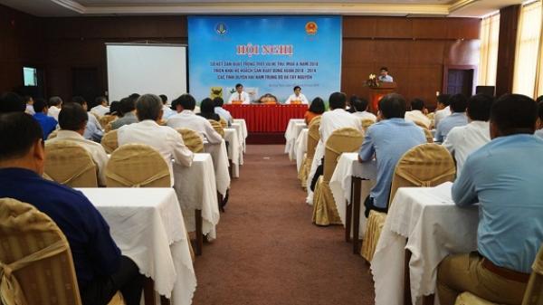 Quảng Ngãi: Triển khai kế hoạch sản xuất vụ Đông Xuân 2018 – 2019 các tỉnh Duyên hải Nam Trung Bộ và Tây Nguyên