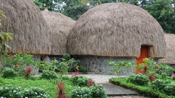 Đắk Nông: Độc đáo Khách sạn hình nấm tại Khu du lịch cụm thác Đ'ray Sáp, cho du khách tha hồ đến check in ngắm cảnh