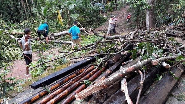 Thanh Hóa: Mưa lớn do ảnh hưởng của bão số 3, 1 người t.ử v.ong, nhiều nhà dân bị hư hại
