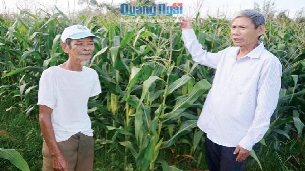 Người trưởng thôn hơn 30 năm tận tụy với dân