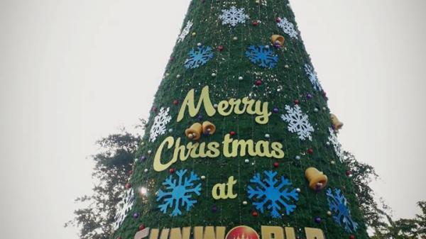 """Chiêm ngưỡng những cây thông """"khủng"""" và lộng lẫy tại Quảng Ninh, địa điểm chơi Noel lý tưởng"""