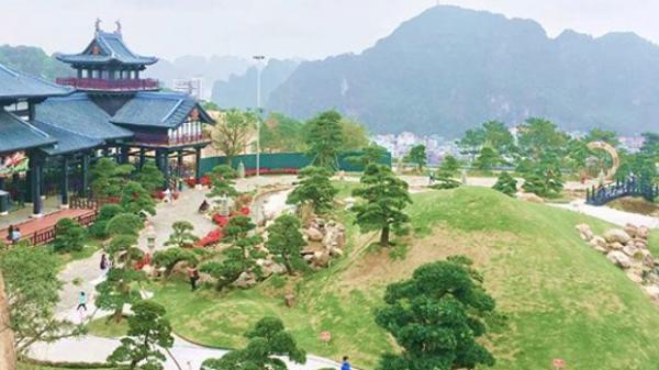 Giới trẻ đua nhau check-in Nhật Bản thu nhỏ ở Quảng Ninh