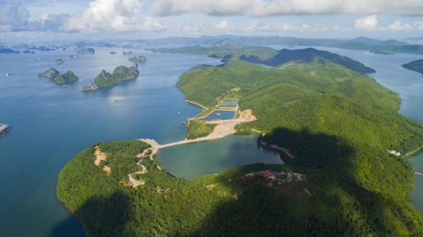 Có một đảo Thẻ Vàng hoang sơ nằm giữa muôn trùng khơi của Quảng Ninh ít ai biết tới