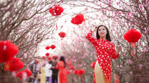 """HOT: Nô nức sống ảo """"ngàn like"""" với hội chợ hoa tết ở Quảng Ninh"""
