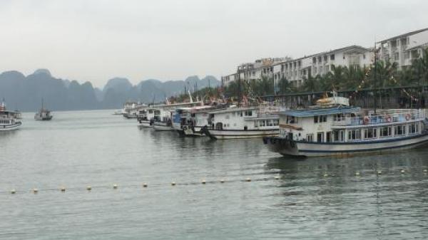 Có 90% tàu du lịch trên vịnh Hạ Long không thể lắp hệ thống xử lý nước thải