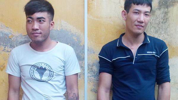 Quảng Ninh: Bắt 2 đối tượng trộm cắp mai vàng Yên Tử
