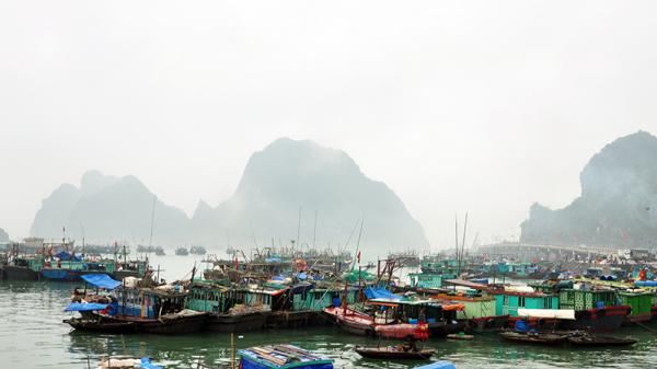 Quảng Ninh đón gió mùa đông bắc, cảnh báo mưa lớn