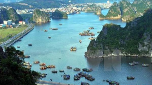 Đình chỉ hoạt động các đơn vị kinh doanh dịch vụ chèo thuyền kayak trên vịnh Hạ Long