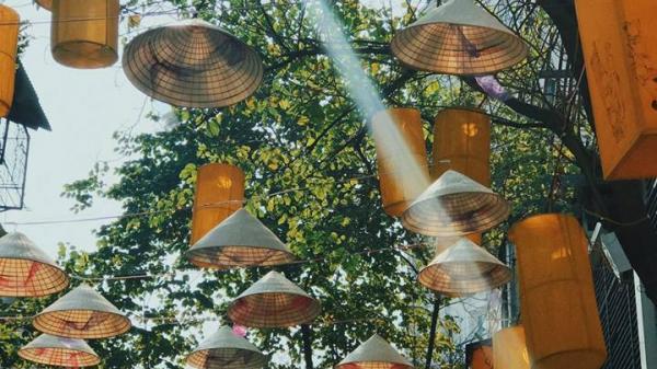 Quảng Ninh: Nhanh chân check-in ngay con đường nón lá đẹp lộng lẫy, thu hút hàng nghìn du khách