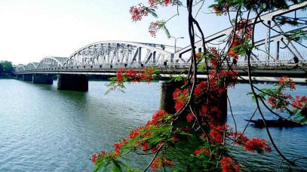 Đất trời xứ Huế đẹp rực rỡ trong mùa phượng vĩ nở hoa