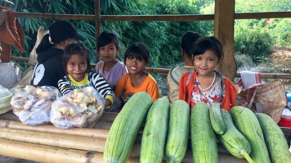 Độc đáo 'chợ sản vật 10 nghìn' chênh vênh trên đèo Măng Rơi ở Kon Tum