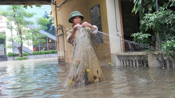 Mưa lớn kéo dài, phố ngập thành sông, người dân thi nhau thả lưới đánh cá trên đường