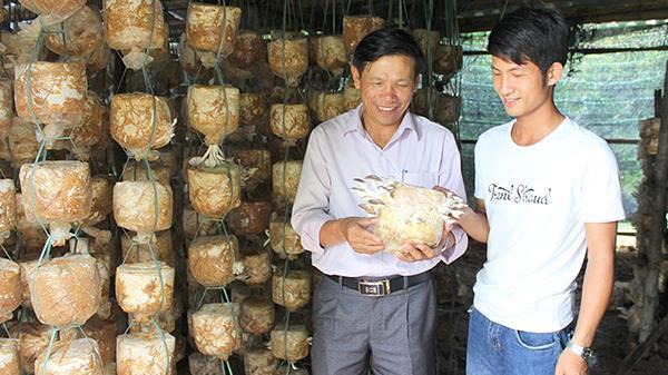 Tuổi trẻ khởi nghiệp với mô hình trồng nấm