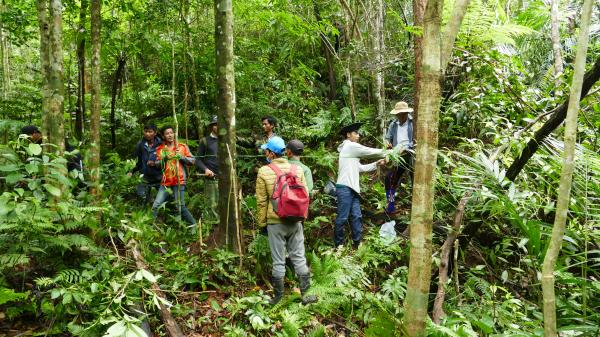 Quảng Trị sẽ có rừng tự nhiên cộng đồng đầu tiên đạt chứng chỉ bền vững