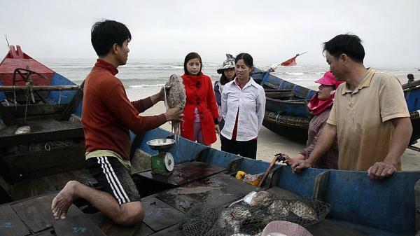 """Ngư dân Vĩnh Thái đón """"lộc"""" biển đầu năm"""