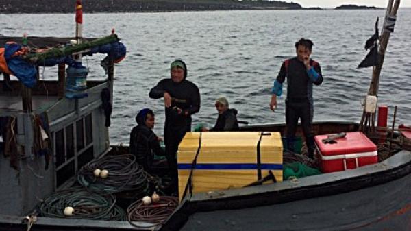 Tạm giữ tàu cá khai thác trái phép tại khu bảo tồn biển đảo Cồn Cỏ