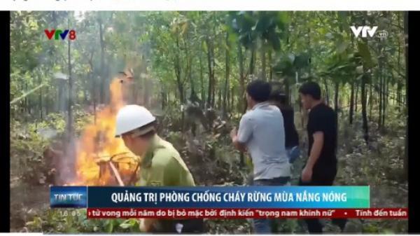 Quảng Trị phòng chống cháy rừng trong mùa nắng nóng kéo dài
